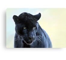My Softer Side Canvas Print