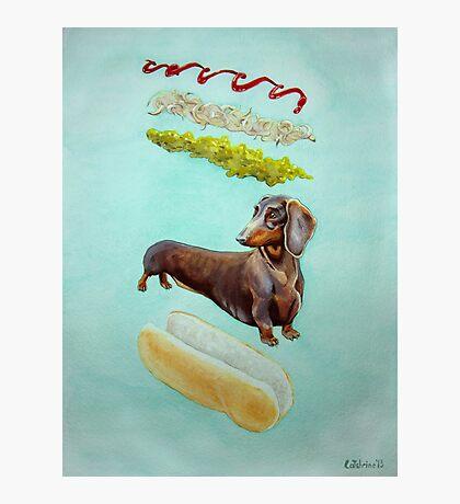 Hot Doggin' - Dachshund in a Bun Photographic Print