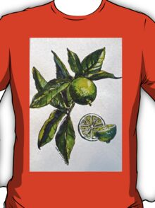 Limes. Pen and wash. 42x32cm. T-Shirt