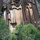 Sawn Rocks (Mt Kaputar National Park, Northwest NSW) by Matthew Walmsley-Sims
