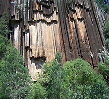 Sawn Rocks (Mt Kaputar National Park, Northwest NSW) by Matthew Sims