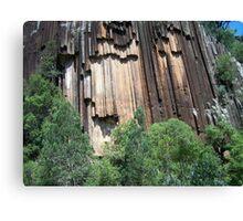 Sawn Rocks (Mt Kaputar National Park, Northwest NSW) Canvas Print