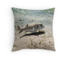 White spotted pufferfish Throw Pillow