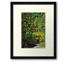 Mary river  Framed Print