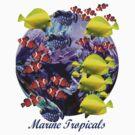 Marine Tropical Fish by Alex Gardiner