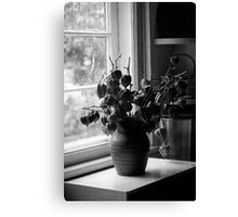 Standing at the Window Canvas Print