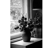 Standing at the Window Photographic Print