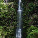 Erskine Falls by KeepsakesPhotography Michael Rowley