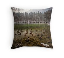 Getting Cold Feet Throw Pillow