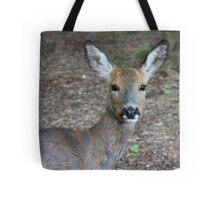 Young sika deer Tote Bag