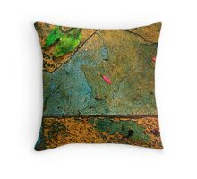 Sandstone Abstract Throw Pillow