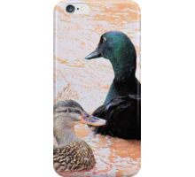 Fowl friendship iPhone Case/Skin