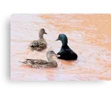 Fowl friendship Canvas Print