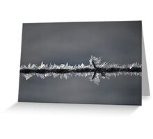 Frost On the Wire Greeting Card