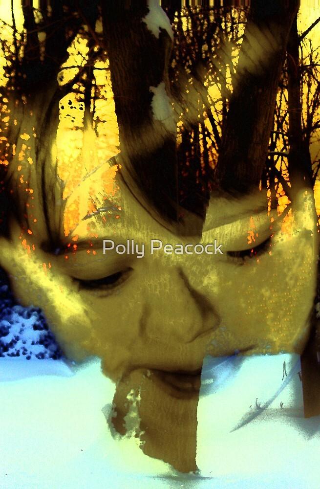Snow Boy by Polly Peacock