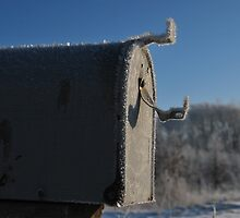 Ice Box II by mnkreations