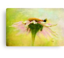 In Perfect Harmony Canvas Print