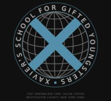 Xavier's School for Gifted Youngsters by Lee Jones