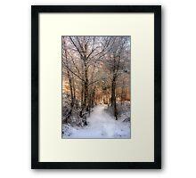 Deer Path in the Snow Framed Print