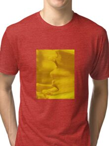 Daffodil close up Tri-blend T-Shirt