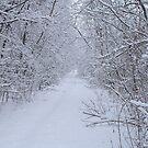 winter wonderland by natnvinmom