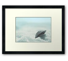 selling sea shells Framed Print