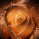 Layers of Love by Annabelle Evelyn