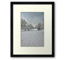 Gloom Winter Framed Print