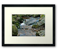 Woodland water at Glencree No3 Framed Print