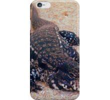 Tegu Lizard iPhone Case/Skin
