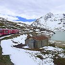 Bernina Train on the Bernina Pass..  by Lilian Marshall