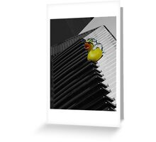 Duck on a keyboard Greeting Card
