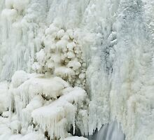 Frozen Falls Details by Shannon Workman
