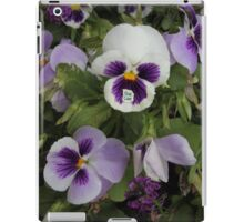 You Can - Collaboration with Photography by Paloma iPad Case/Skin