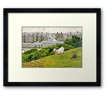 Above suburbia Framed Print