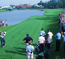 Tiger on #18 at TPC Sawgrass by moessnert