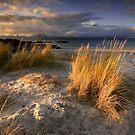 Scotland : Ben's Beach by Angie Latham