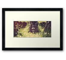 Jack Daniel's Framed Print