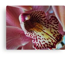 Orchid..Charlie Brown Canvas Print
