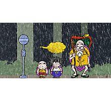 DB-Totoro Photographic Print