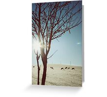 Tree and Cows Greeting Card