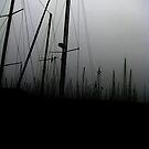 Last Ships by Glenn Browning