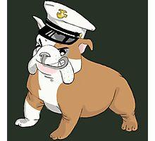 Marine Bulldog Photographic Print