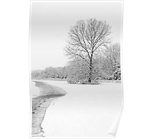 Path by the Tree Poster