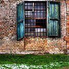 Window in winter by marcopuch