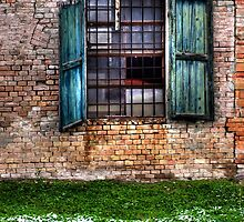 Window in winter by marcopuch