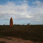 Termite Pinnacle - North Queensland by DanielRyan