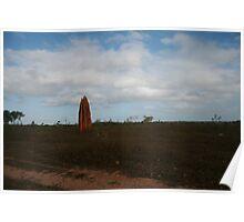 Termite Pinnacle - North Queensland Poster