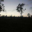 Sunrise - North Kennedy River, North QLD by DanielRyan