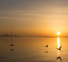 Wings at Sunrise - Toronto Skyline With Flying Geese by Georgia Mizuleva